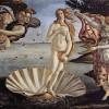 Aphrodite und das Hefeweizen