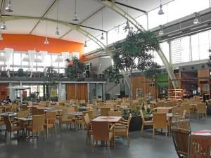 gähnende Leere - ein gewohnter Anblick in der »Grünen Halle« (Foto: Doc Bendit)