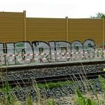 Graffiti an Lärmschutzwand (Foto: A. Schermann)