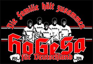 Das bedrohliche Logo der »HoGeSa« (Foto: Screenshot ZEIT Online)