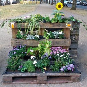 Platz ist auf der kleinsten Palette: Grün in der Stadt tut allen gut! (Foto: Ralph Stenzel)